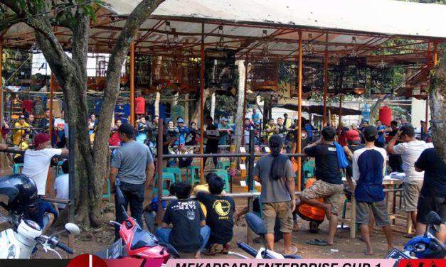 Mekarsari Enterprise Cup 1 : Gending Tampil Hebat, Reborn Comeback!!