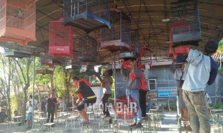Sampang BC Dan Ocel-k SF Mendominasi