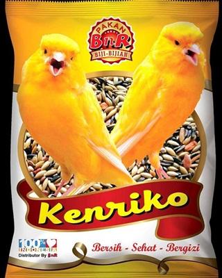 Kenariko