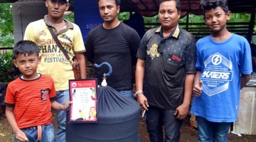 King Cobra Jawara MB