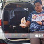Sandy GES SF Geser Haluan Kacer, Orbitkan Debutan Anyar Murai Batu Jaguar Juara Kelas Utama