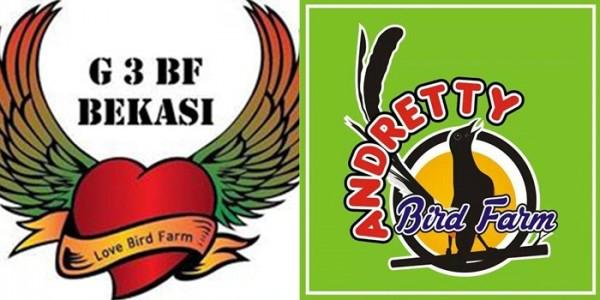 Kolaborasi Andretty BF Surabaya dengan G3-LBF Bekasi Moncer di Presiden Cup IV