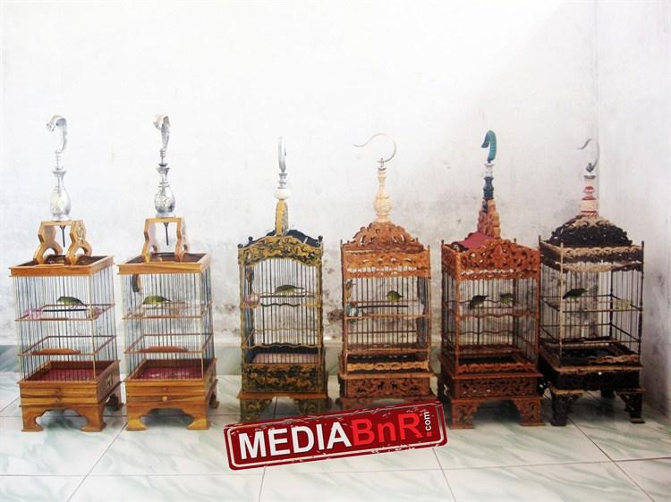Koleksi sangkar-sangkar pleci terbaik