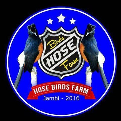 Logo Hose BF