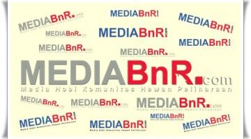 Logo MediaBnR