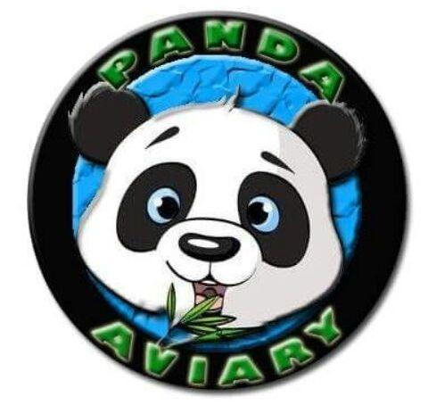 Panda Aviary