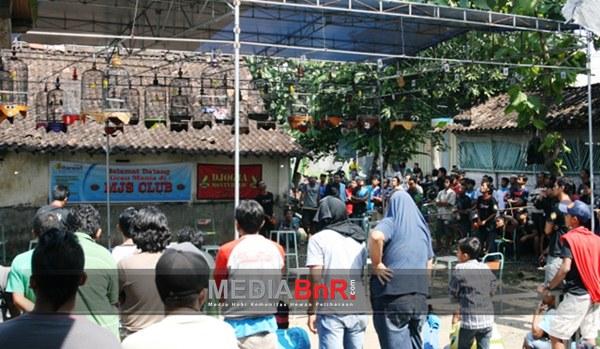 Giant Calon Ancaman Baru, SKC Jogja Dan Klaten BC Raih Juara Umum