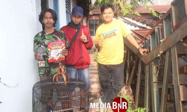 Arsa Ap Prospek Cerah, Jhon Wick – Sena-  Zoro – Sultan Stabil Juara