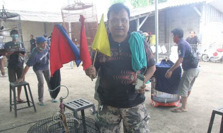 Borong Juara. Jon Key – Topeng- Anak Mas – CB Siap Tarung Ulang di Latber Kamis