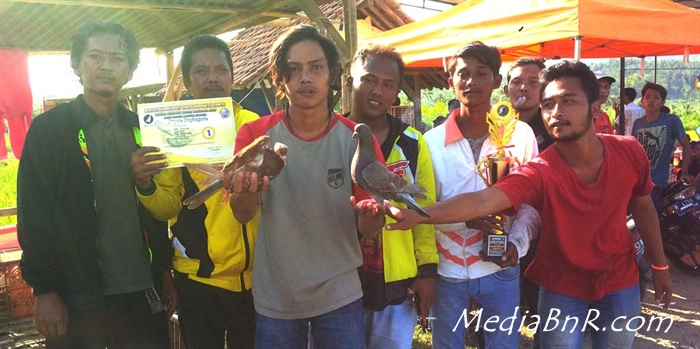 Burung Jagoan Tumbang,  Mk Junior Naik Podium, Coco Dan Dolar Kuda Hitam Melejit