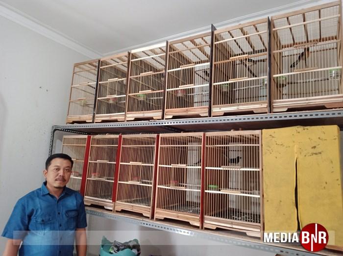 Mutiara Bird Farm – Ternak Jadi Solusi Dimasa Pandemi