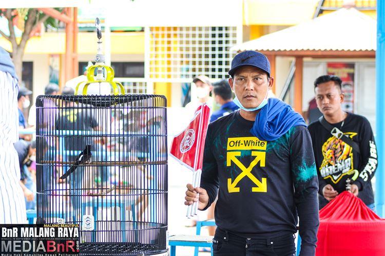 Pendatang Baru Murai Batu Marquez Siap Orbit Di Event-event Besar Indonesia