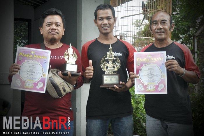 Mr. Cris Bawakan Murai Batu Blankon Bersama Gerobag SF Nyeri ketiga