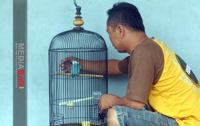 Mr. Ompong Perawat Handal