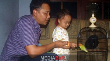 Mr. Anggo Menyuapkan Langsung Gabah Kering Untuk Mengontrol Birahi Gerhana