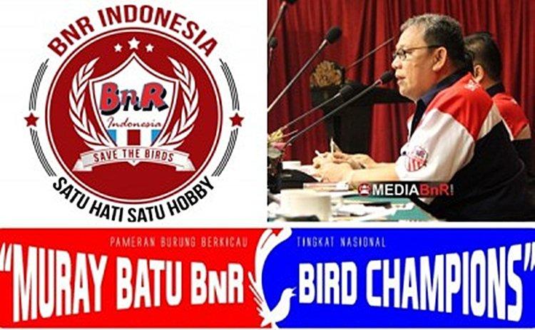Murai Batu BnR Bird Champion 21 Mei Lapangan Banteng