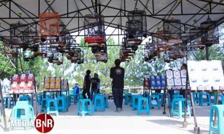 Perang Bintang, 500-an Kontestan Ramaikan Exclusive BnR Purwakarta