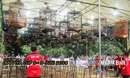 Anniversary Baraya Cup 1 Mendapat Support Yang Luar Biasa