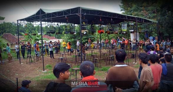 Ngaliyan BC Tetap Menjadi Favorit Kicaumania Semarang