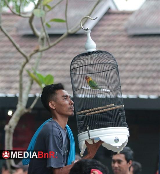 Oky Indra 5758. Bersama Nareswari Rebut Juara 1 Paud A Silobur