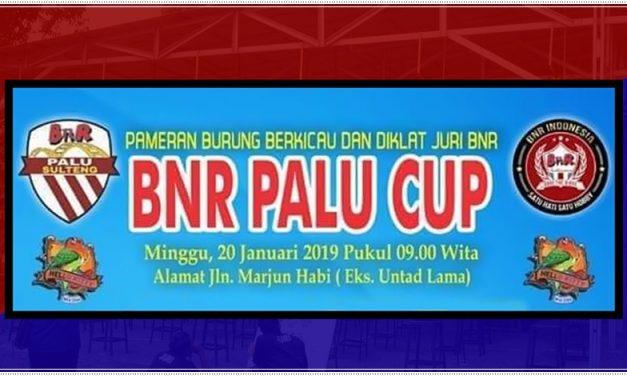 Daftar Juara BnR Palu CUP – Minggu, 20 Januari 2019