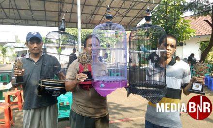 BnR Prasetya Jatimakmur – Setiap Selasa Dibanjiri Love Bird Mania