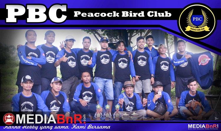 Totalitas Tim PBC (Duta Piala Presiden Jokowi)