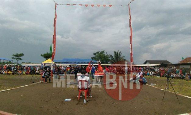 Satu , Dua & Tiga Milik Terosri, Galeto Dan Quick Silver, Royal Team Borong Juara