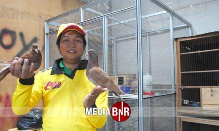 Setengah Miliar : Qiu Qiu Pecahkan Rekor Transfer