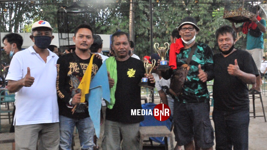 Pak Beje Badaan SF Magelang - Cocak Hijau Rimba stabil,tak lepas dari 3 besar