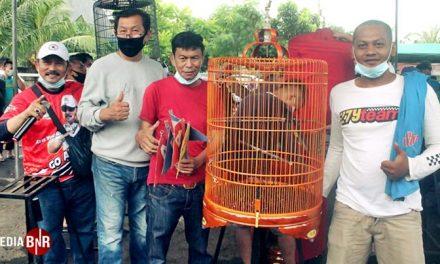 Memukau Pangeran Double Winner. Banaspati & Atago Gemilang