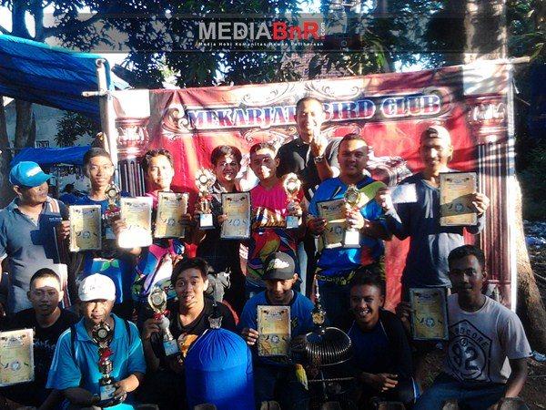 Para Jawara Love Bird Patut Diwaspadai Pada Aksi Selanjutnya
