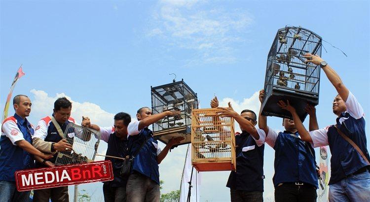 Pelepasan burung ke alam liar bersama BnR Indonesia (2)