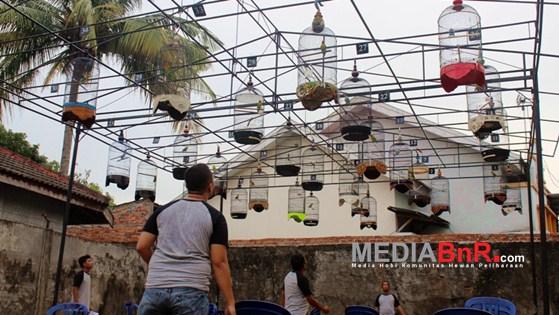 Gerbang Persijam Ramaikan Dunia EO Perburungan di Kota Jambi
