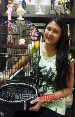 Putri Wijayanti - Shanty Orbitan di Kelas Ring