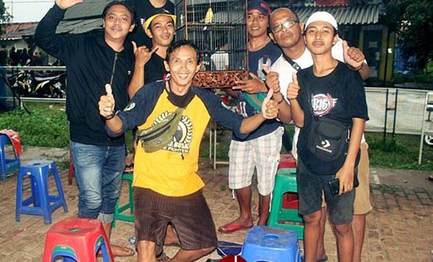 Road To Piala Extravaganza BBC Jaya Purwakarta  Murai Batu Misteri Memukau, Optimus, Buser Gemilang di Kenari