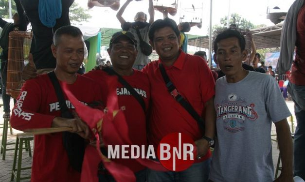 Piala Tangerang Selatan – Murai Batu Viking Kembali ke Performa Terbaik, Langsung Moncer disesi Pertama