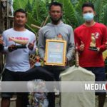 King Kobra Kacer Recommended – Ra Umum, Selo Gedeg & Land Cruiser Perpanjang Record Juara