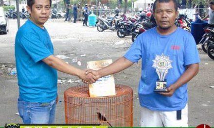 Tampil Menarik, Sofyan Chopielady Take Over Gasing Tengkorak Senilai 30 Juta..!!