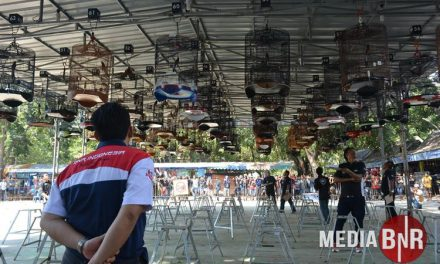 Parasurama Terbaik-Mesin Jahit, Alpukat & Gambang Suling Berbagi Gelar