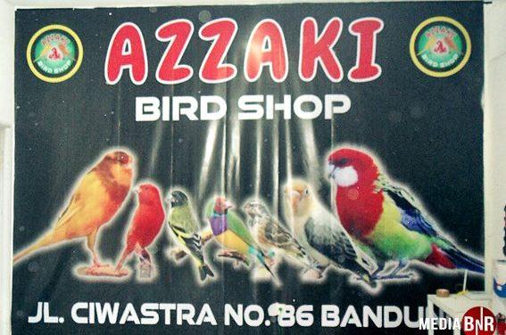AZZAKI BIRD SHOP BANDUNG – GUDANGNYA KENARI DI KOTA KEMBANG