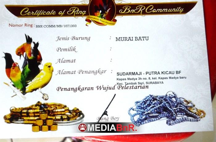 Sertifikat Dari BnR Community sebagai penangkar ring BnR atas nama Sudarmaji