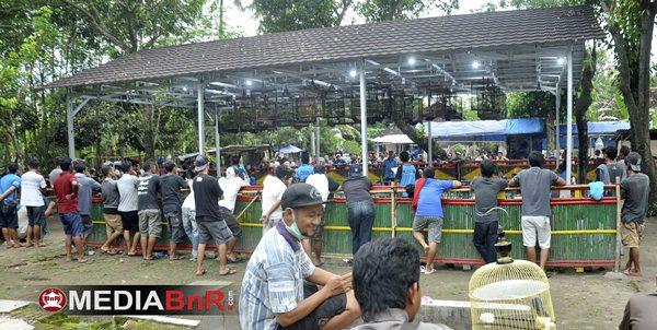 Inul Menggoyang di Jalur Jawara