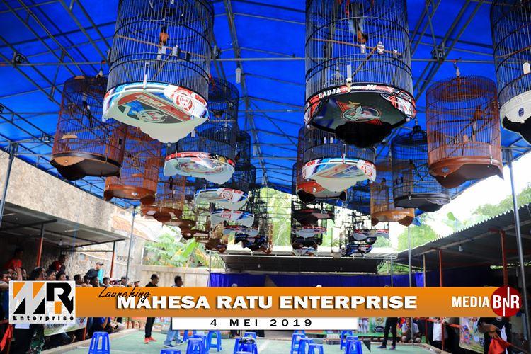 Launching Mahesa Ratu Enterprise