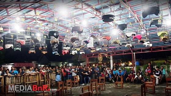 Resmi Dibuka, Latber Love Bird Malam Mangkunegaran Rutin Tiap Selasa & Sabtu