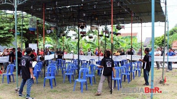 Primadona, Rainbow, Jengkelin, Y Lala, Buntung Sabet Juara di Rojolele Delanggu