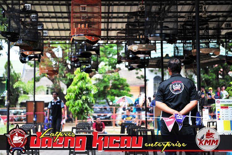 Daeng Kicau Enterprise Ramaiakan Dunia Kicau Kota Makassar