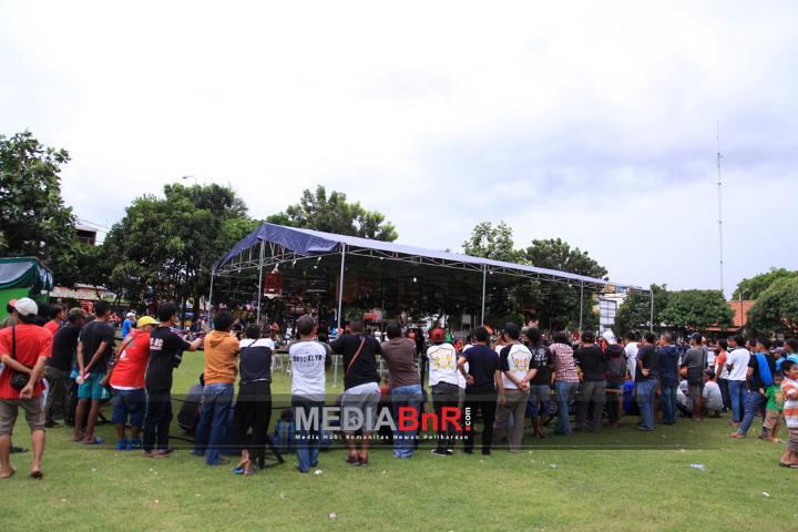 Piala Sultan Banten, Kudeta Nyeri, Zuviter Hattrick
