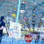 Maksimal 27 Kelas Digelaran BnR Indonesia