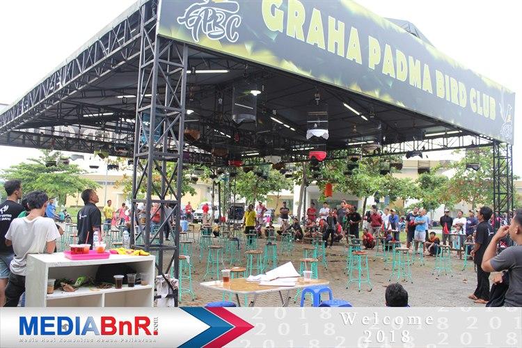 Suasana kompetisi lovebird Graha Padma BC